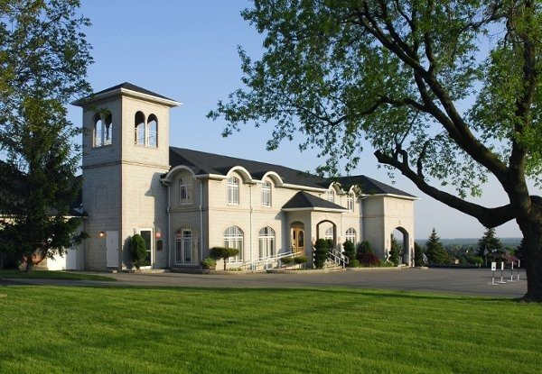 11-9-vineyard